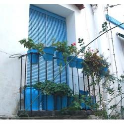 Persiana Alacantina  de PVC